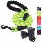 1.5metre Long Dog Leash Review
