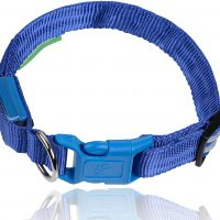 LE Illumiseen Dog Collar More Visible & Safe