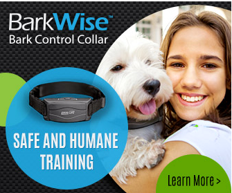 barkwise collars adverts
