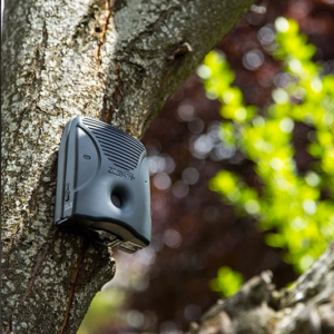 GOODLIFE DOG SILENCER IN THE TREE
