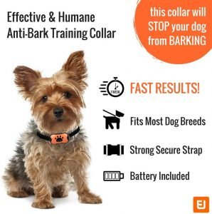 anto bark collars